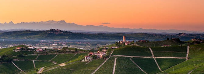 Beyond Barolo: Nebbiolo's New Faces